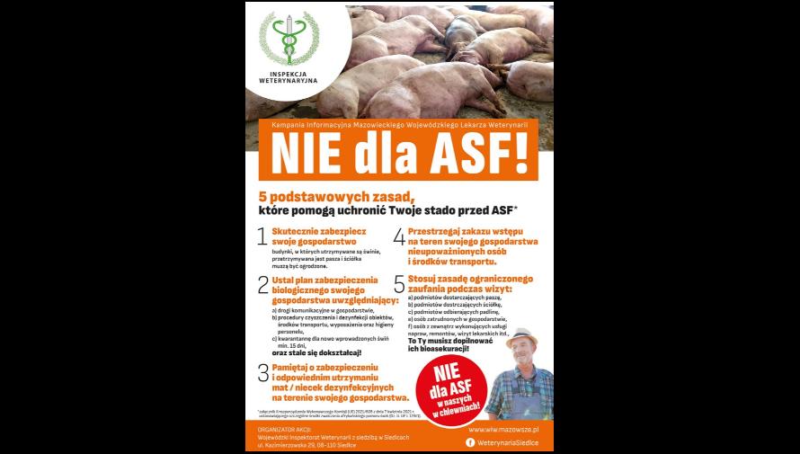 Plakat - kampania informacyjna Mazowieckiego Wojewódzkiego Lekarza Weterynarii - Nie dla ASF
